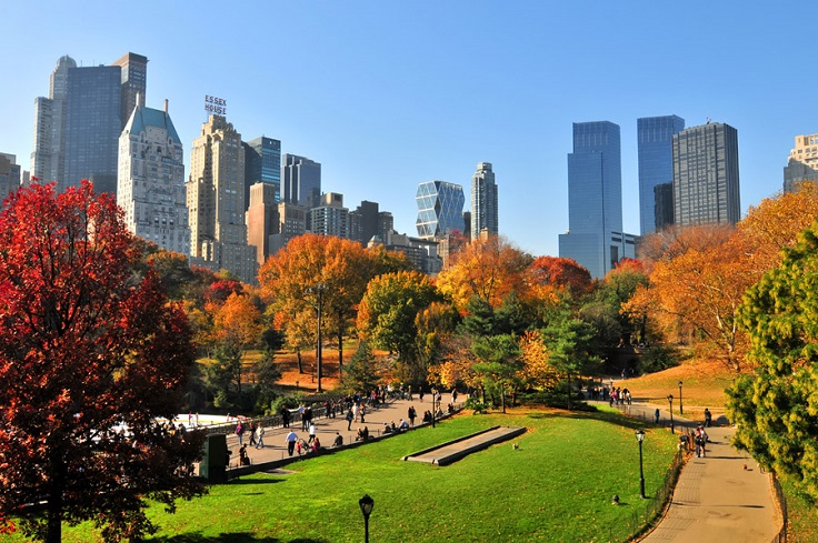 Top 10 Places in New York That You Must Visit