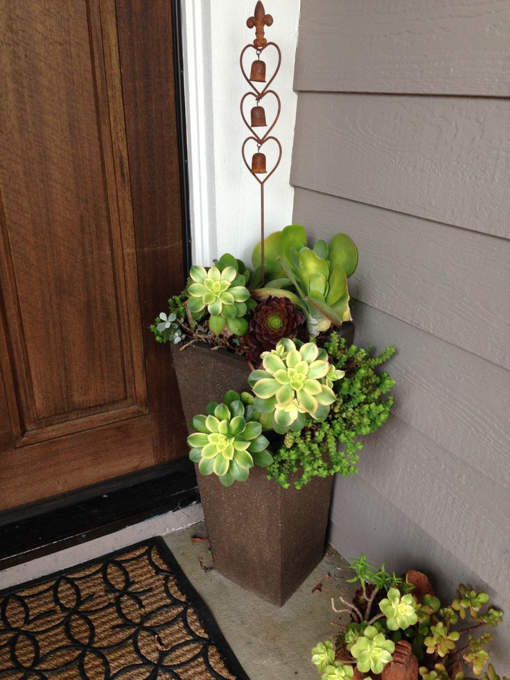Best 10 containers for your porch garden pics and tips Plants next to front door