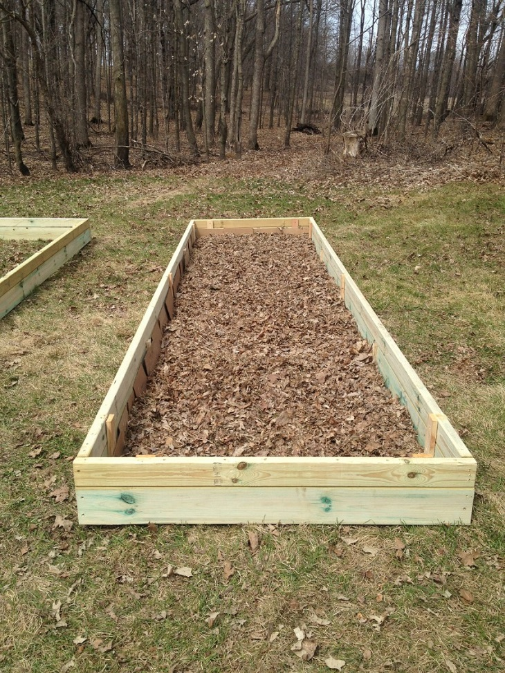 TOP 10 Tips For Lasagna Gardening