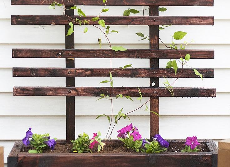 Planter-Trellis