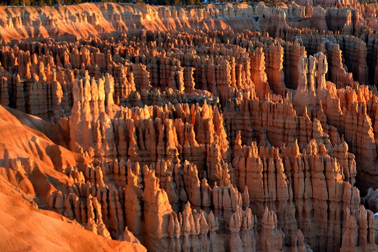 Top 10 Breathtaking Canyons in the USA You Must See