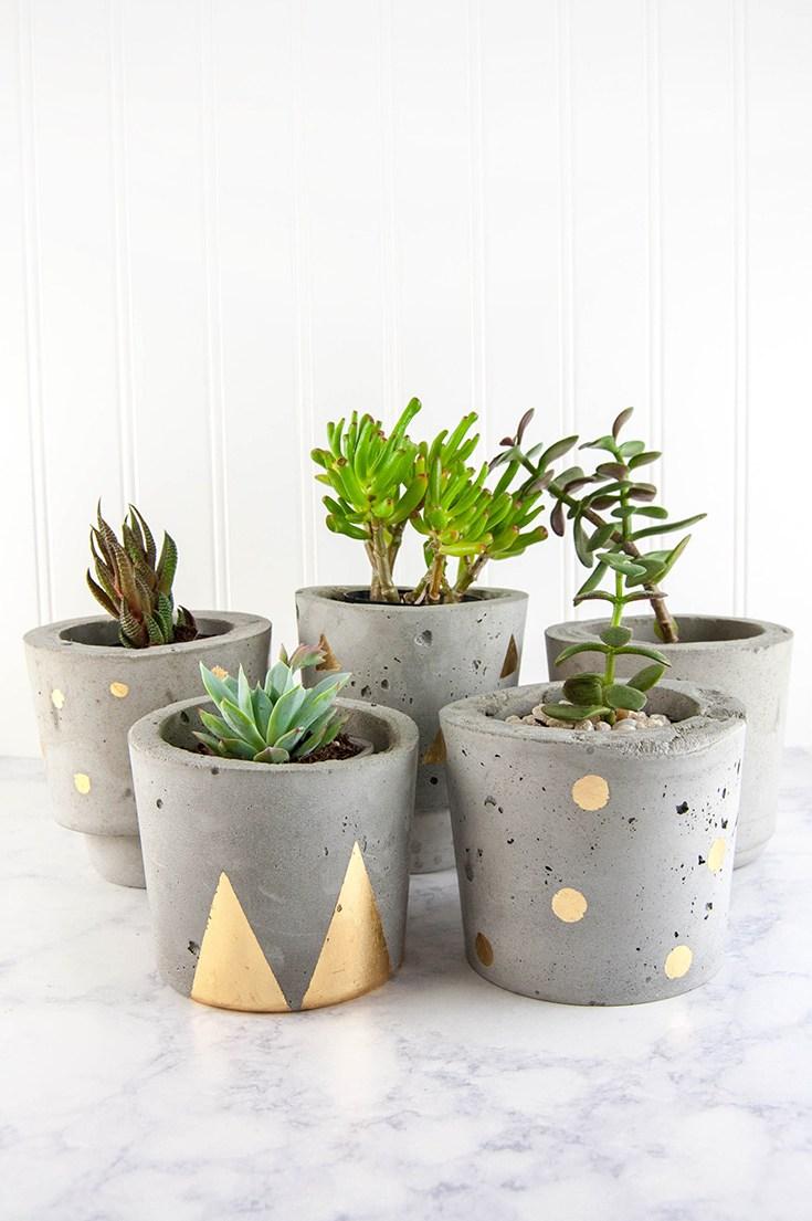 Make-Concrete-and-Gold-DIY-Plant-Pots