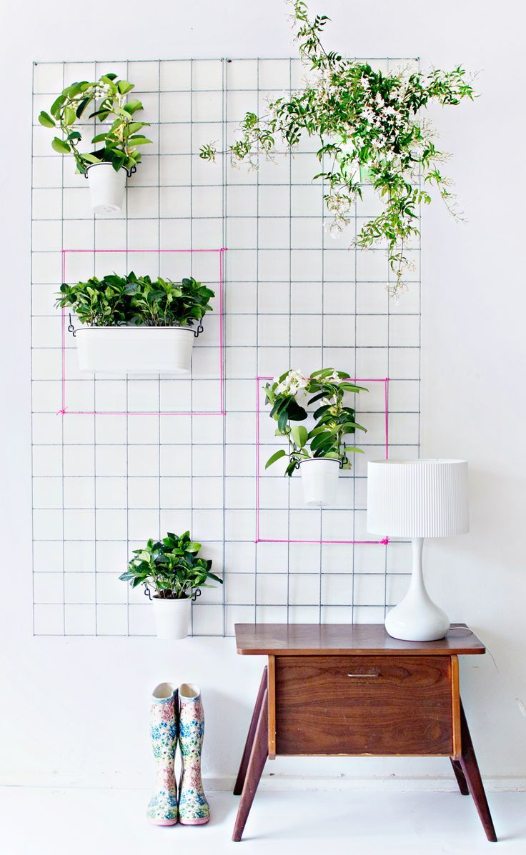 Wall-Wire-Planter