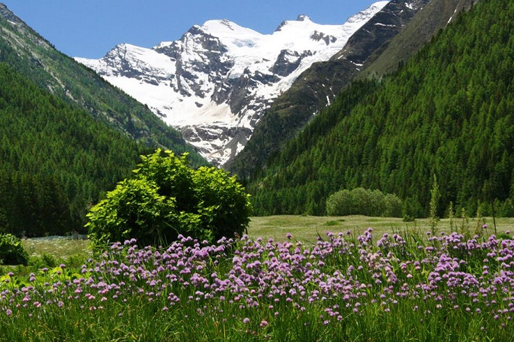Gran-Paradiso-National-Park
