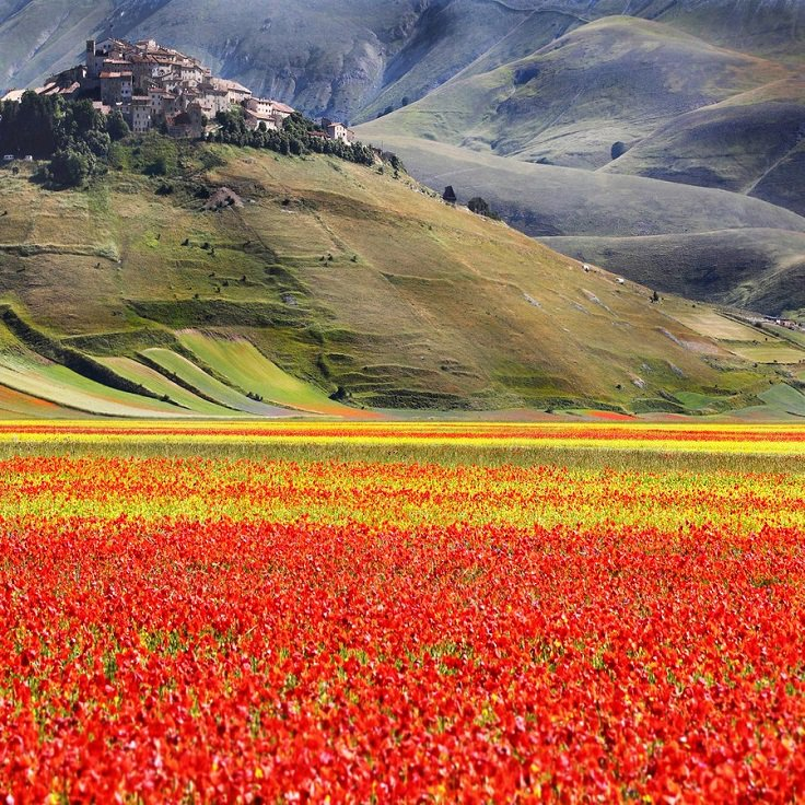 Top 10 Must Visit Places in Italy for Nature Lovers