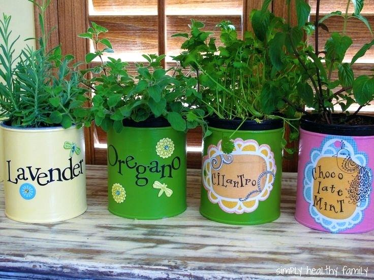 Tin-Can-Herb-Garden