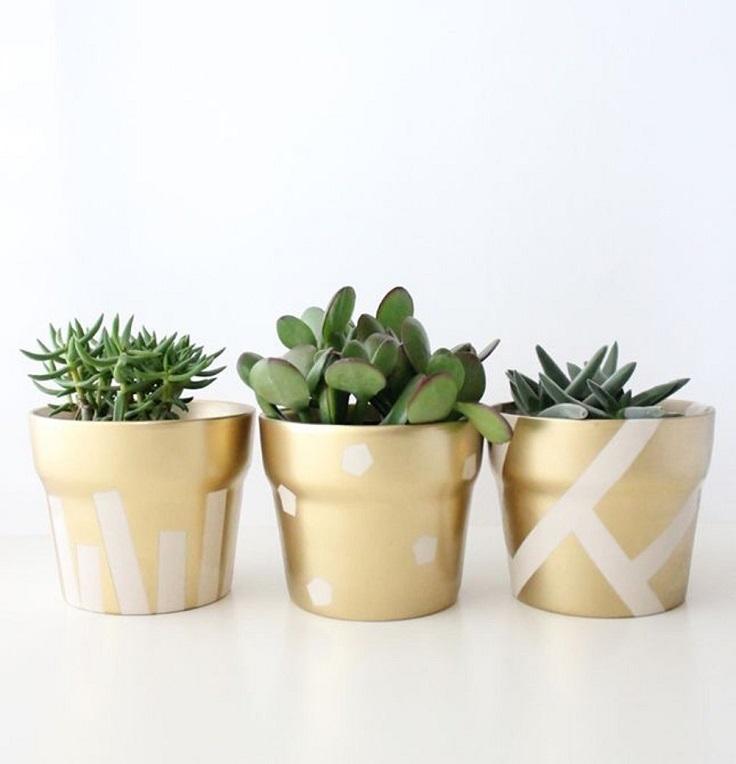 Gilded-Succulent-Pots
