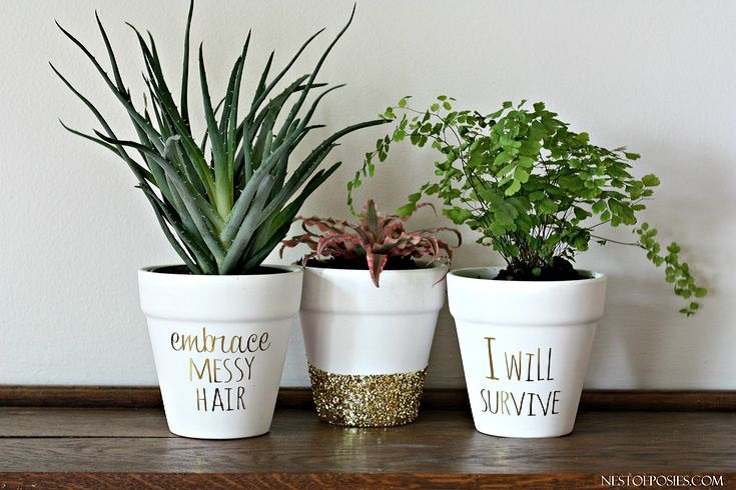 Gold-Foil-Lettering-on-Pots