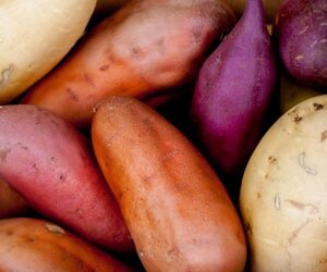 Top 10 Tips on Growing Your Own Sweet Potatoes