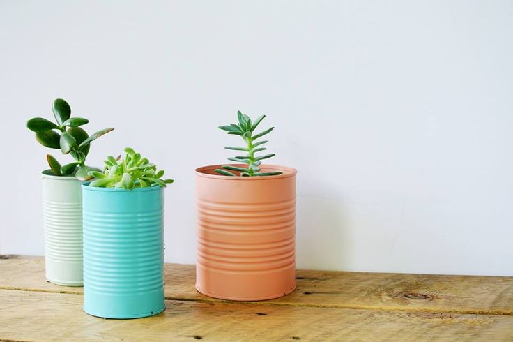 Tin-Can-Planters