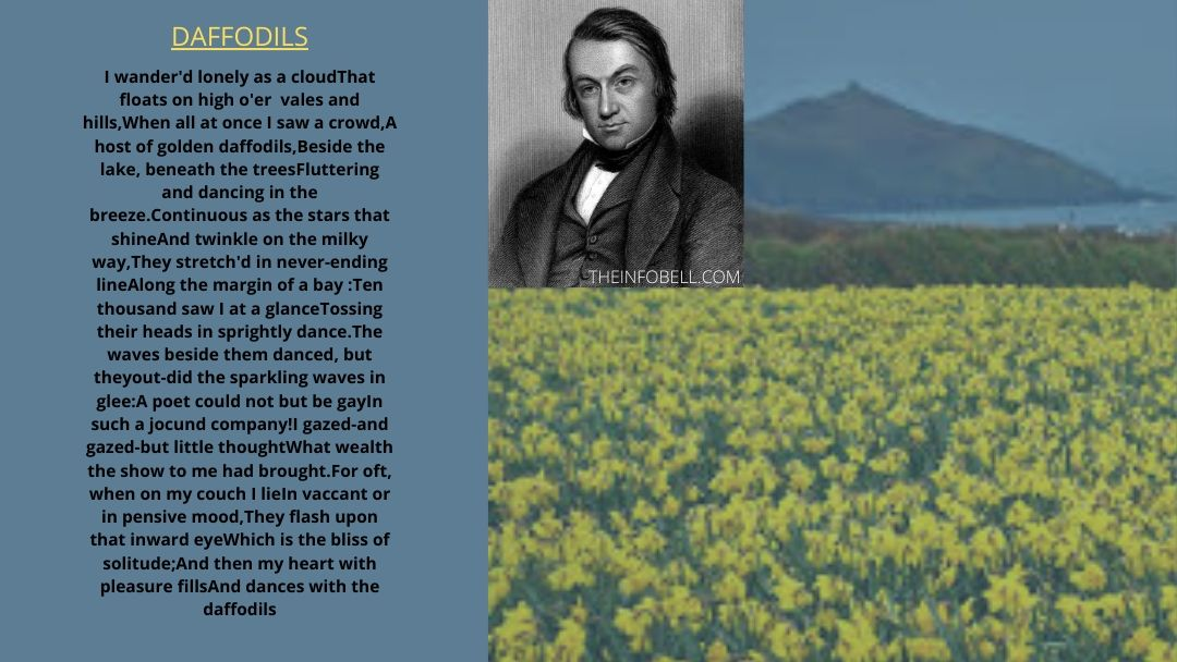 The-daffodils-by-william-wordsworth-class-7-questions-and-answers-lesson-5-assam