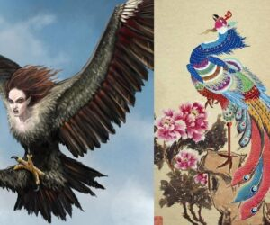 Top 10 Mythical Birds You Can find in Folklore and Legends