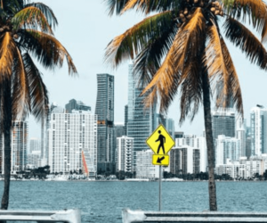Top 5 Useful Steps To Help You Know What To Do If You Want To Live In Miami