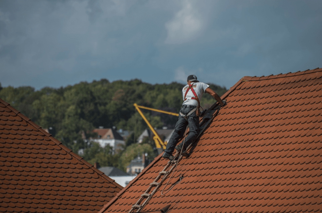 roofers-1024x678